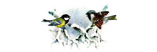 http://audioskazki.net/wp-content/gallery/bianki/sini4kin_kalendar/03.png
